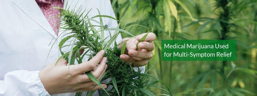 medical marijuana banner